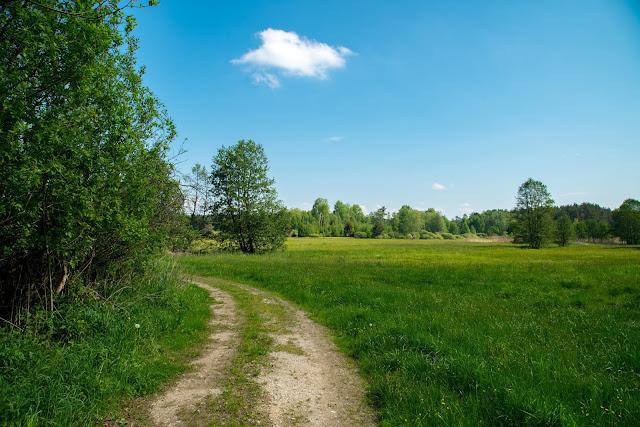 Vilsecker-Muldenweg Amberg-Sulzbacher-Land-07