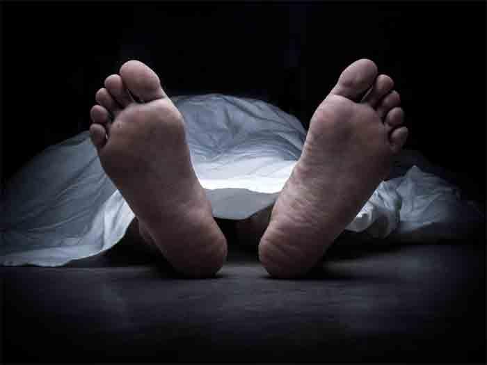 Following scuffle, Ludhiana man kills 2, then kills self, News, Panjab, Local News, Killed, Crime, Criminal Case, National