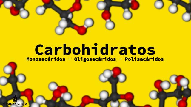 carbohidratos bioquimica ractica