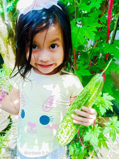 'Arthelo's Garden' fresh harvest