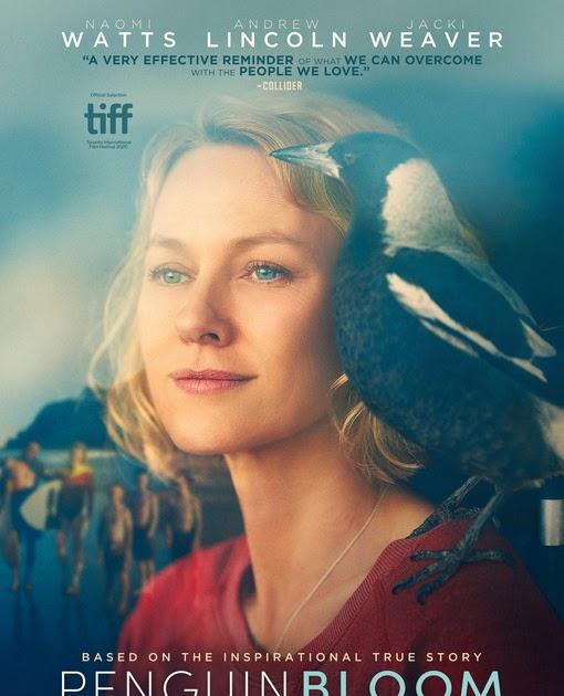 Download Filme Penguin Bloom 2021 Qualidade Hd