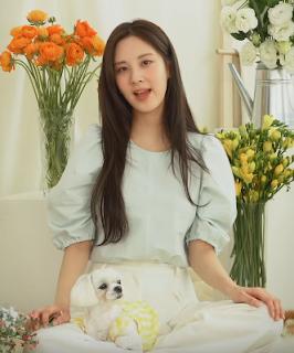 snsd seohyun cover