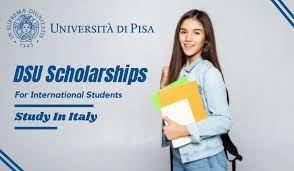 https://www.neweditiontv.com/2021/08/dsu-scholarship-for-international.html