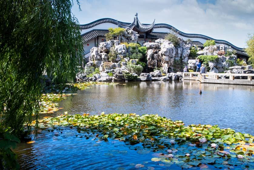 Pond at Lan Yuan Dunedin Chinese Garden, Dunedin, New Zealand.