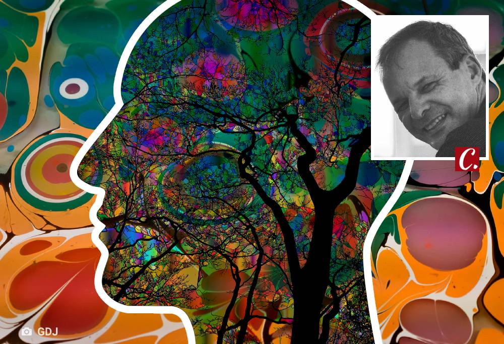 literatura paraibana psicodelismo pink floyd rock raul seixas