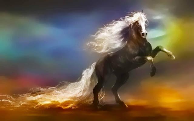 fantasy horse wallpaper