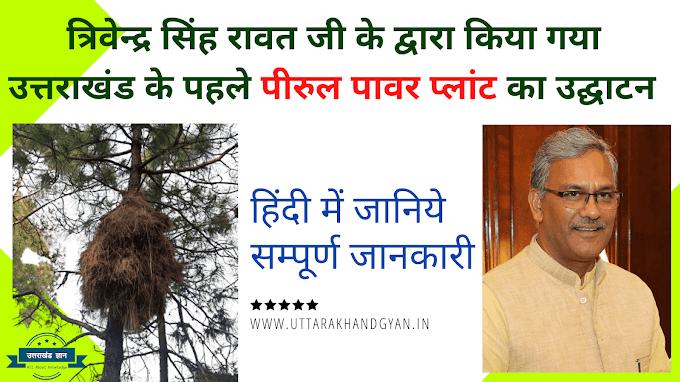 उत्तराखंड राज्य के उत्तरकाशी जिले में पीरुल से किया जायेगा बिजली का उत्पादन