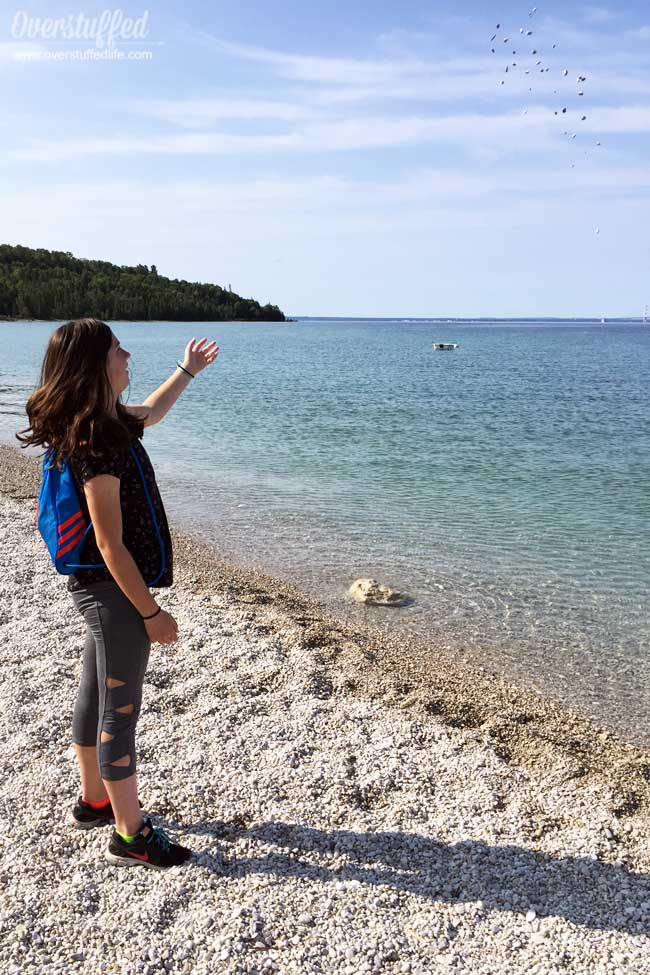 British Landing on Mackinac Island is a historical beach spot where you can swim, learn about history, find cool rocks, and enjoy the view of the Mackinac Bridge.