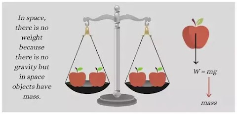 What is mass? Differences between mass and weight