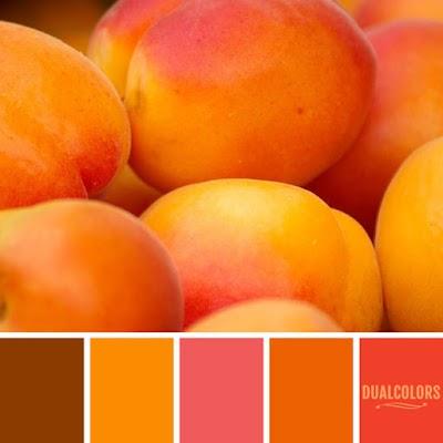 Color Paleta 89