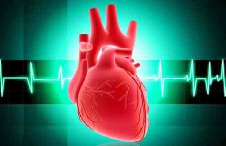 9 Tips Agar Jantung Anda Sehat