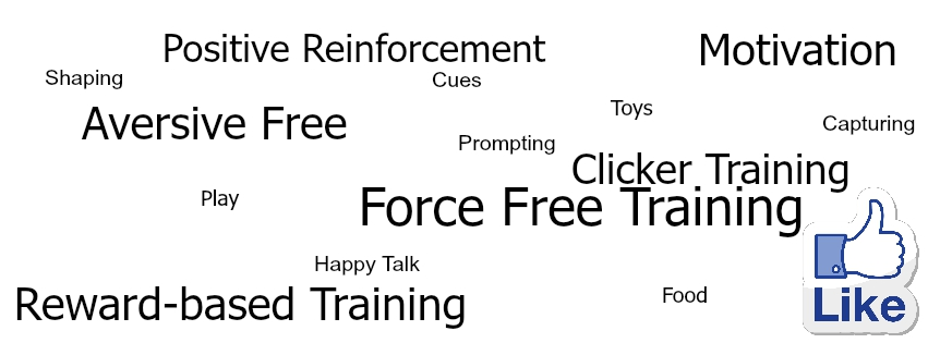 Apdt Dominance And Dog Training