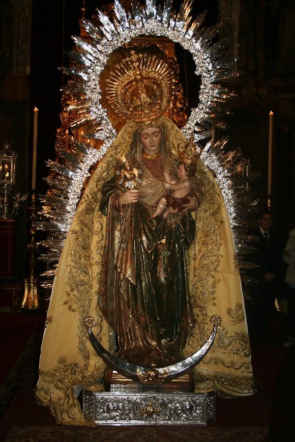 Horario e Itinerario Procesión de Nuestra Señora del Amparo de la Real Parroquia de la Magdalena. Sevilla 10 de Noviembre del 2019