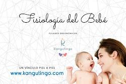 Fisiología del Bebé