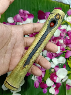 buntat bambu liang pengantin, bambu unik, bambu langka, 7 bambu unik langka yang paling dicari orang, batu mustika buntat bambu, bambu pengantin
