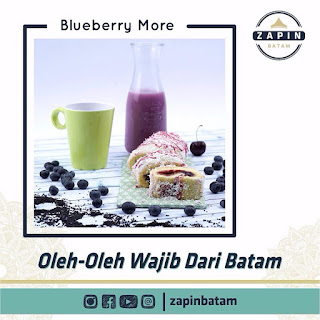 zapin-blueberry-more
