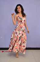 Actress Richa Panai Pos in Sleeveless Floral Long Dress at Rakshaka Batudu Movie Pre Release Function  0071.JPG