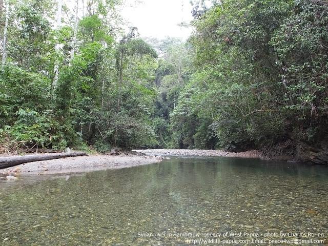 Trekking and riverwalk tour in Indonesia
