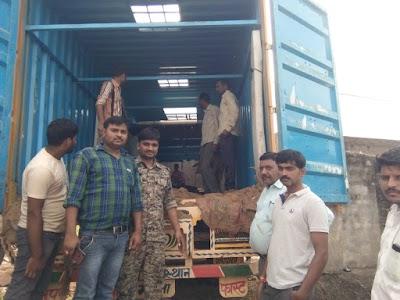 सफलता : लुकवासा पुलिस ने 35 बछड़े एवं बैलों से भरा हुआ कंटेनर पकड़ा   kolaras News