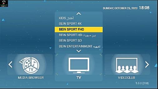 StbEmu IPTV Code portal+MAC