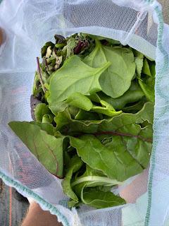 Mixed Bag of Greens