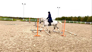 Polework Exercise - Team Tunnah Equestrian Blog