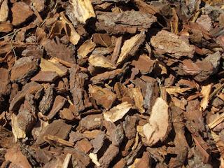 Tipos de calderas de biomasa