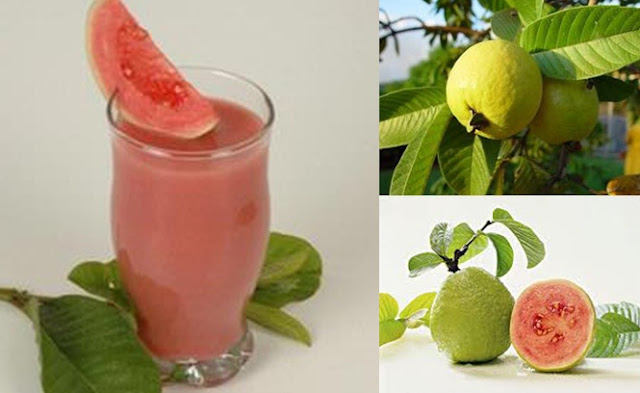 Guava benefits for health and beauty