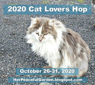 2020 Cat Lovers Blog Hop Image