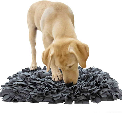 Juegos de Búsqueda para Perros