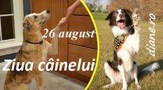 26 august: Ziua câinelui