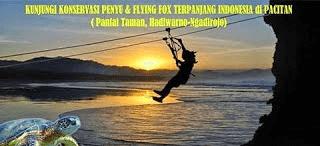 Penangkaran Penyu dan Flying Fox Terpanjang di Indonesia -Pantai Taman