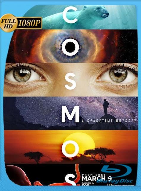 Saga Cosmos Documentales HD (1984, 2014, 2020) [1080p] Latino [GoogleDrive] SilvestreHD