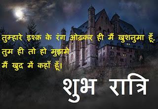 love good night shayari in hindi