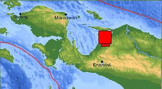 Penembakan Terjadi di Perbatasan RI-Papua Nugini