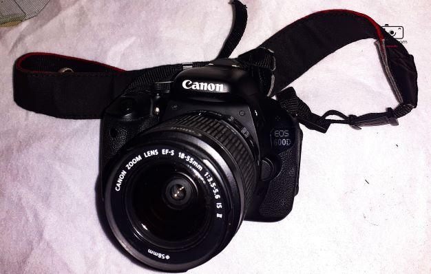 kamera murah untuk pemula