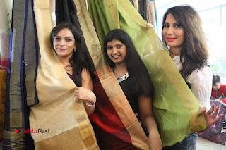 Silk India Expo Launch Stills  0096.JPG