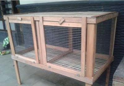Desain dan cara membuat kandang kelinci sendiri yang murah