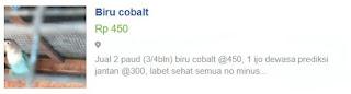 Harga LB biru cobalt