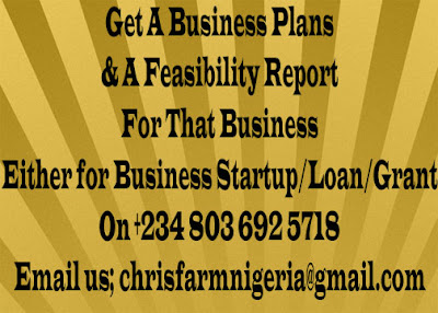 Feasibility Study vs Business Plan (lets write one for you)