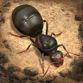 تحميل لعبة The Ants: Underground Kingdom للأندرويد XAPK
