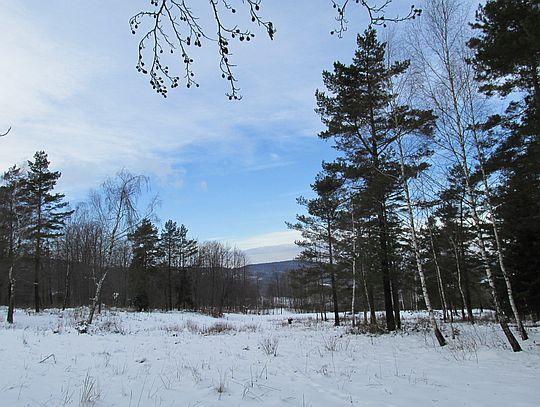 Spojrzenie w kierunku doliny ze wsią Bartne.