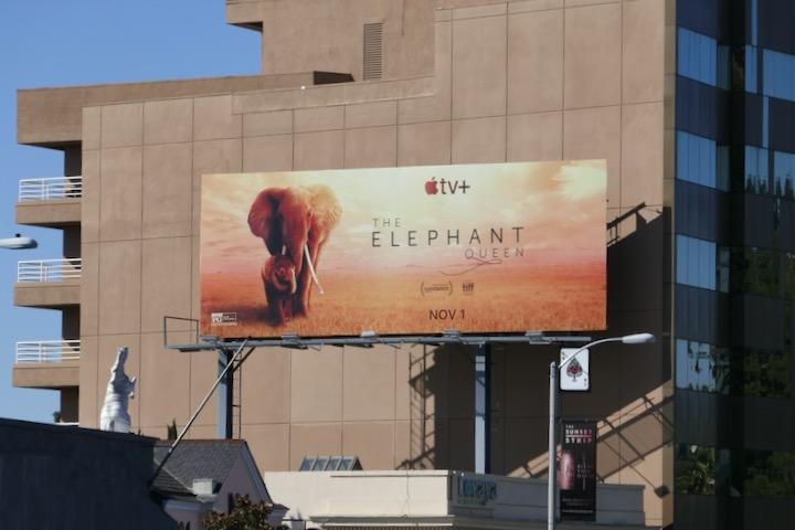 Elephant Queen Apple TV billboard