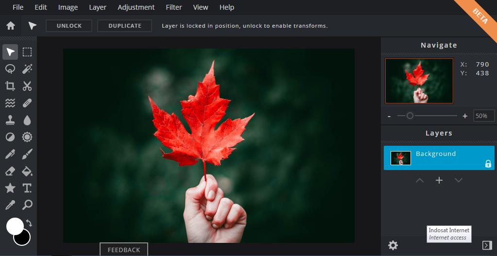 Edit Foto Online Dengan Pixlr Editor Versi Terbaru
