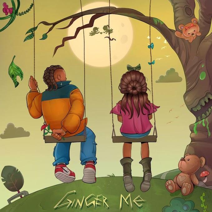 [Music] Rema - Ginger Me