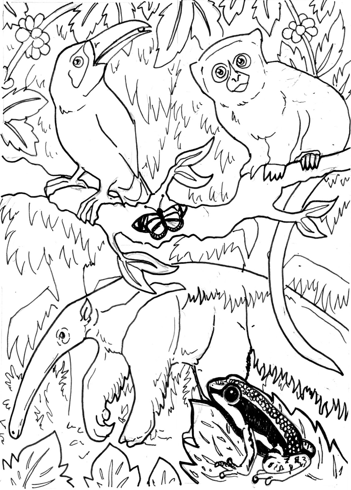 rainforest animal coloring pages - photo#28