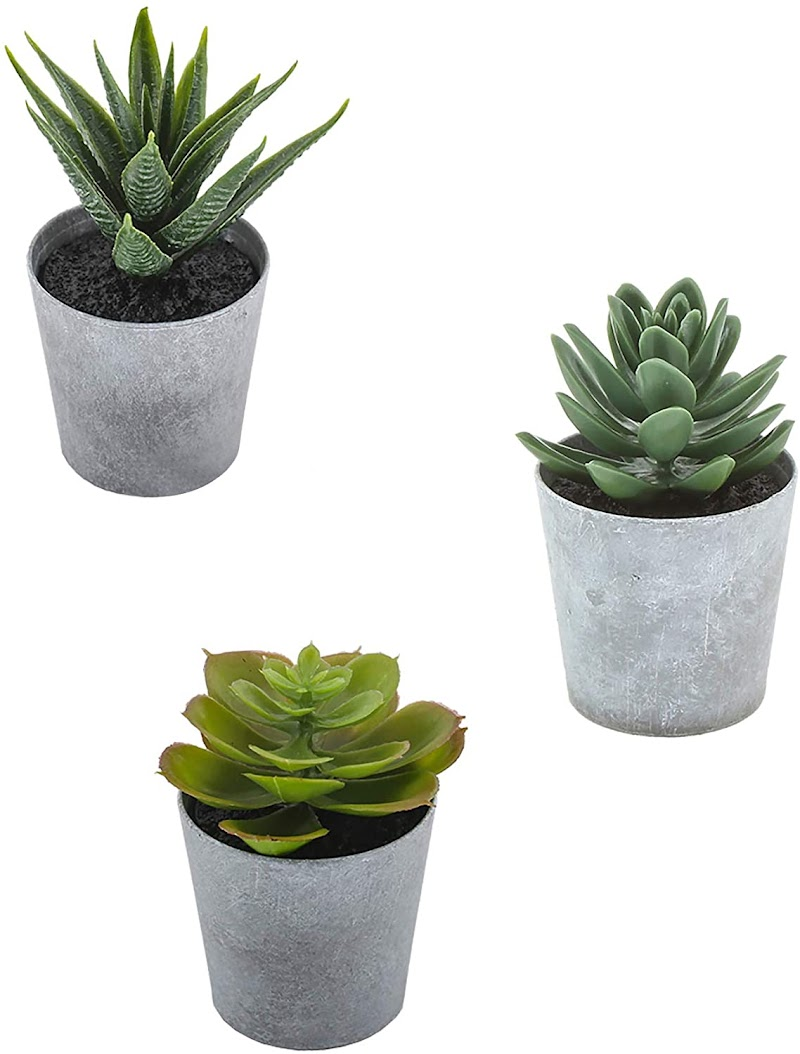 50% off Artificial Succulents set of 3