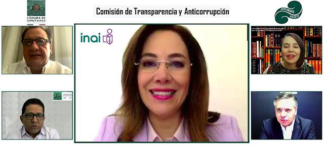 Comisionada del Instituto Nacional de Transparencia, Acceso a la Información y Protección de Datos Personales (INAI), Blanca Lilia Ibarra Cadena