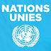 Stagiaire aux Nations Unies