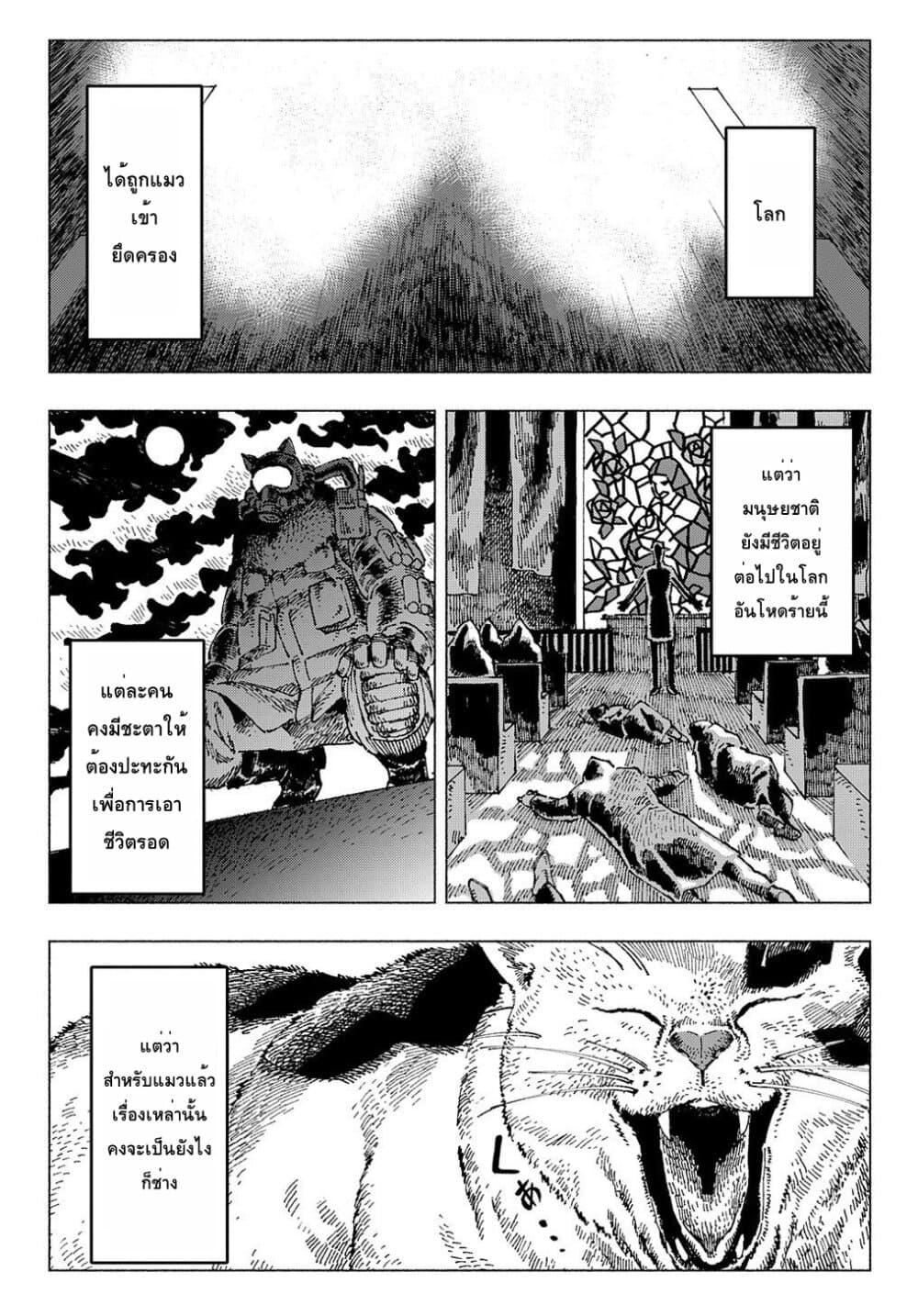 อ่านการ์ตูน Nyaight of the Living Cat ตอนที่ 1 หน้าที่ 42